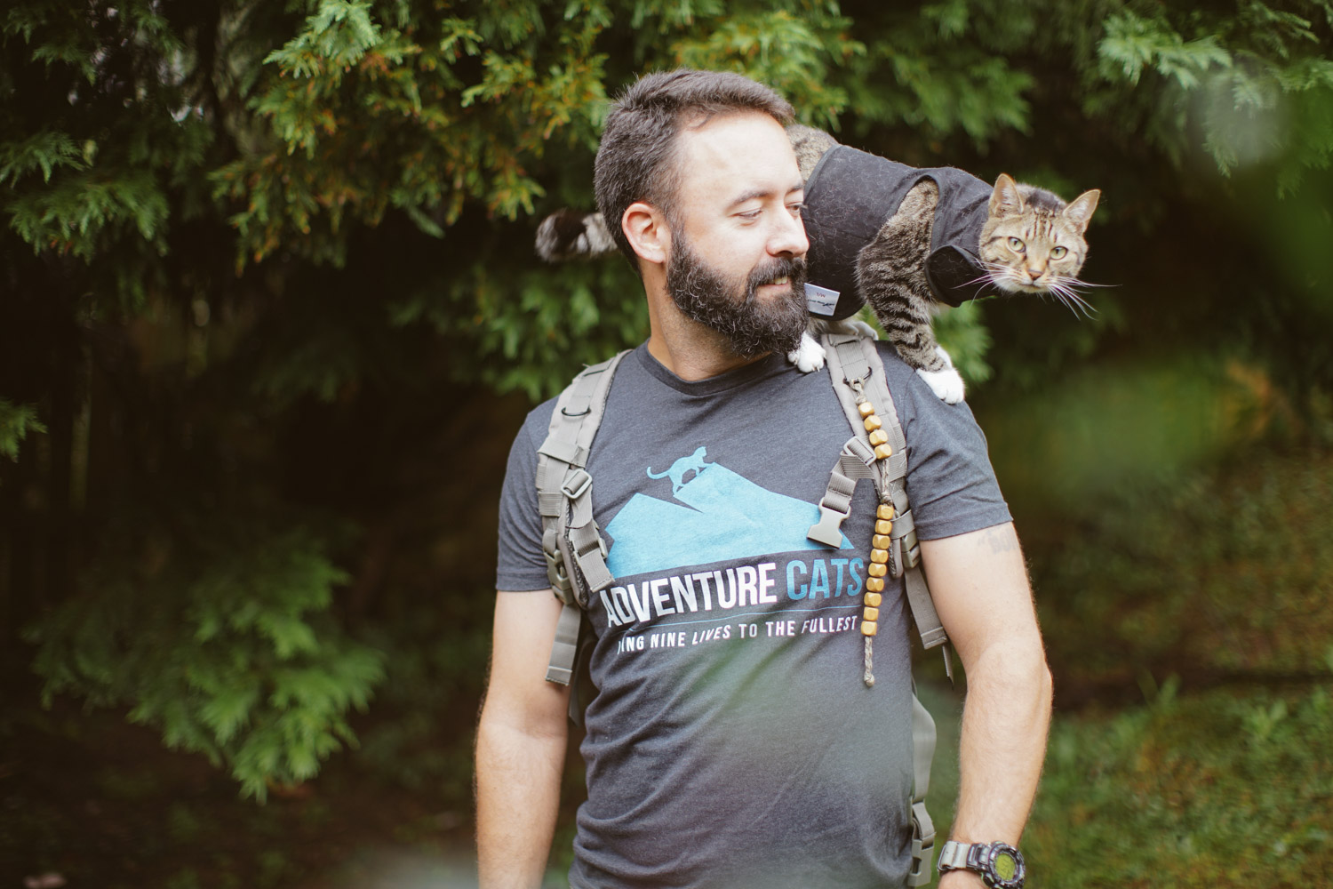 adventure-cats-shirt-chad