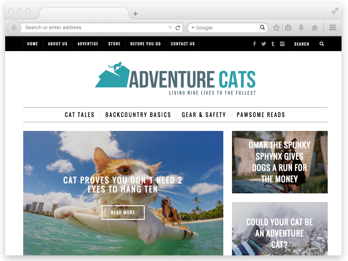 adventure-cats-web