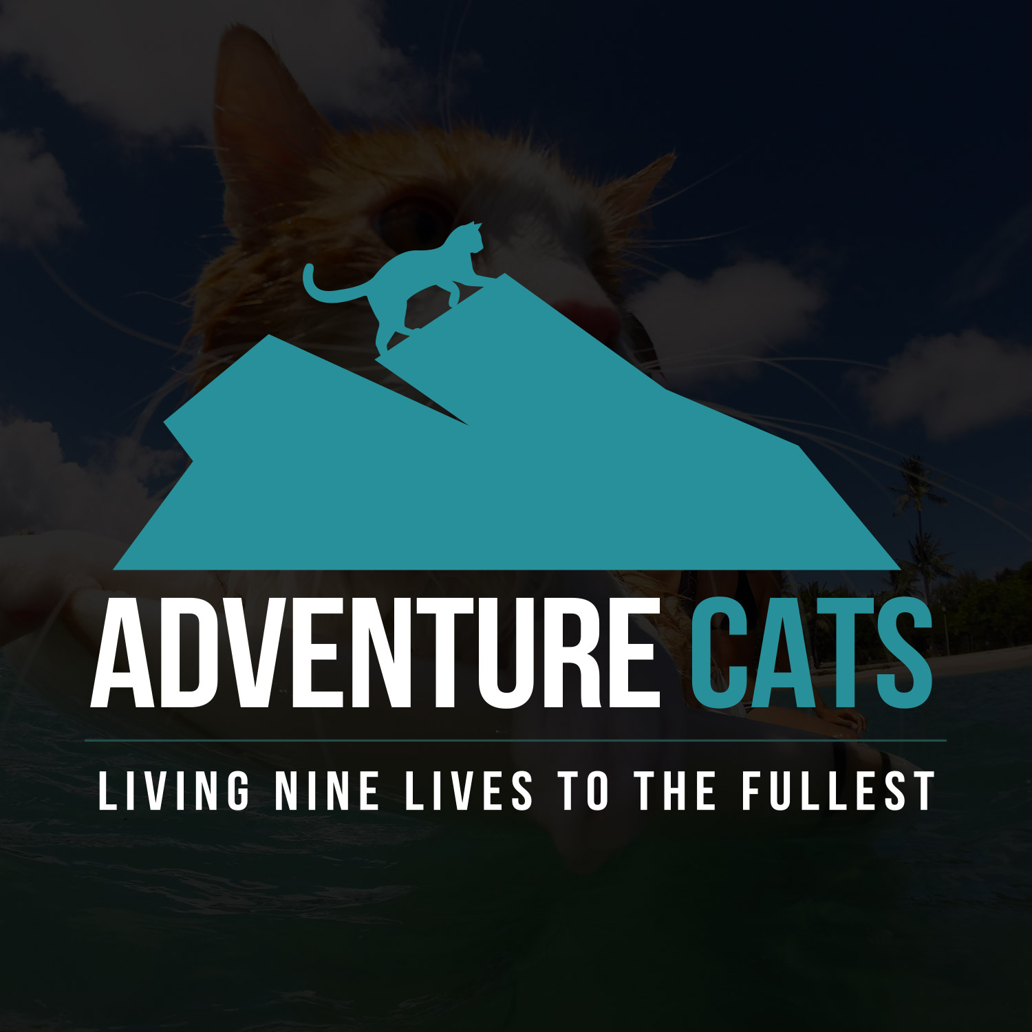 adventurecats-logo